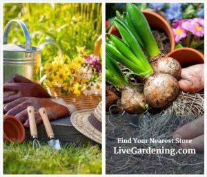 Fluid Ads gardening-html5-ad